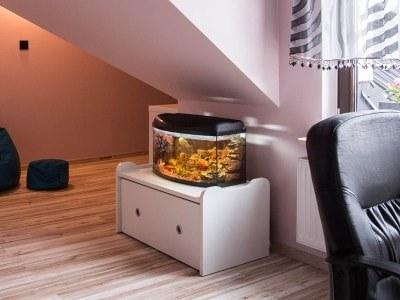 średnie akwarium