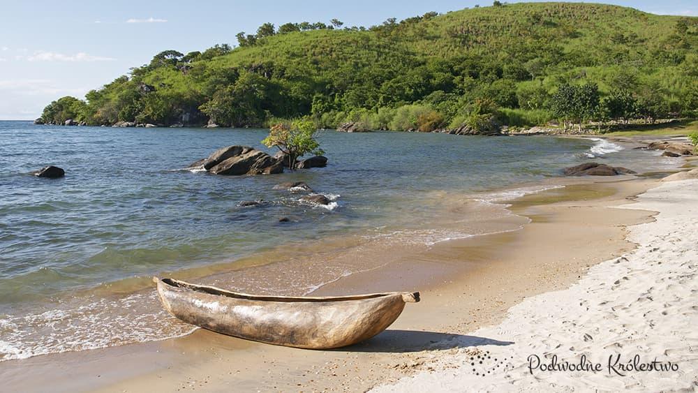 Jezioro Malawi w Afryce - Podwodne Królestwo