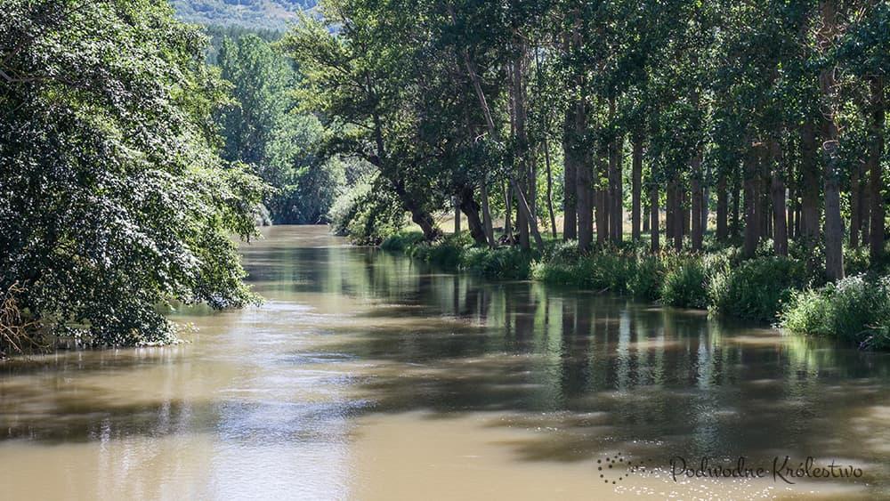 Rzeka Ebro - Biotopy Europejskie