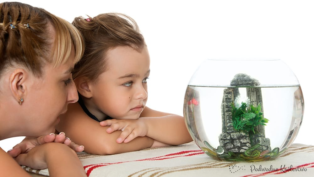 Akwarium dla dziecka