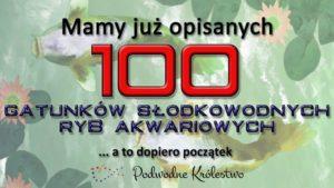 Ryby akwariowe - 100 opisów