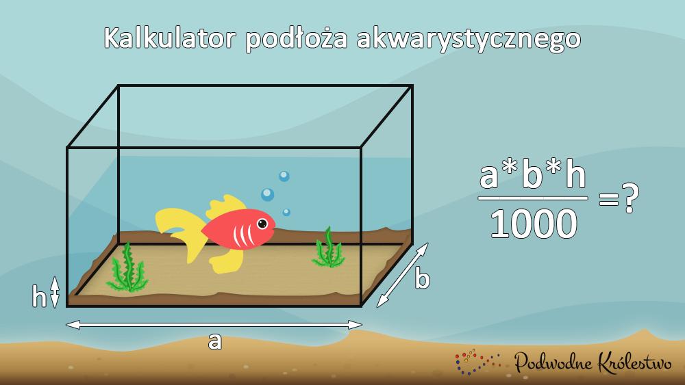 Ile podłoża do akwarium